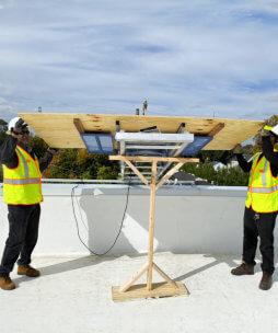 adult men lifting plywood